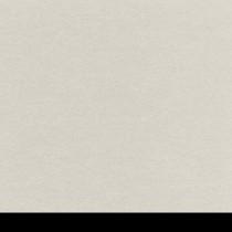 Aicham Larson-Juhl BlackCore Seidengrau 066-45256