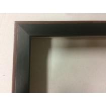 Fabira Schwarz Rücken dunkelbraun ca. 20mm High 2040