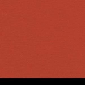 Aicham Larson-Juhl BlackCore Korallenrot 066-77756