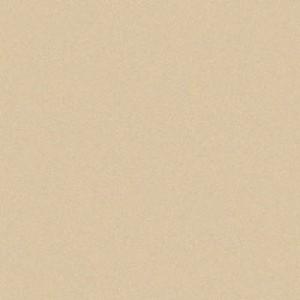 Aicham Larson-Juhl Artique Birch A84837